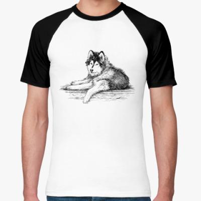 Футболка реглан С собакой породы сибирский хаски