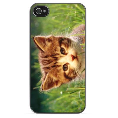 Чехол для iPhone Котенок в траве