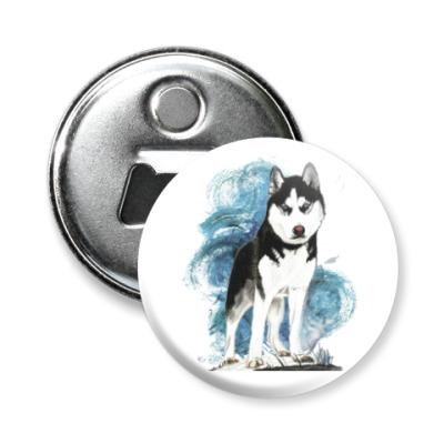 Магнит-открывашка Собака хаски. Siberian husky