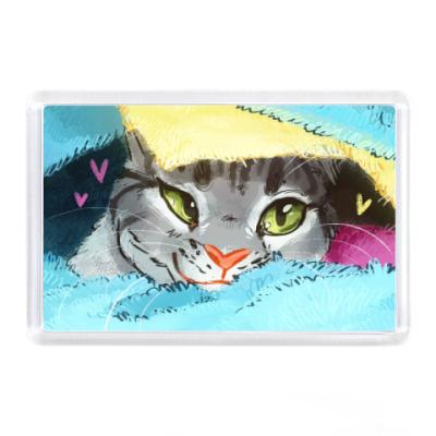 Магнит Кот в одеялке