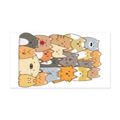 Виниловые наклейки Смешные коты (funny cats)