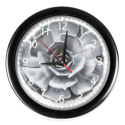 Часы Alive