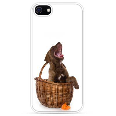 Чехол для iPhone Щенок лабрадора