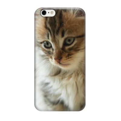 Чехол для iPhone 6/6s Взгляд Кота