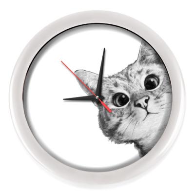 Настенные часы Любопытный котик