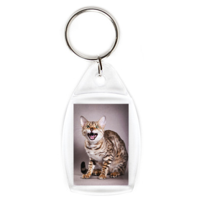 Брелок Котики-котята