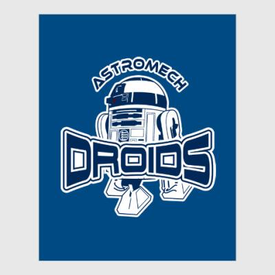 Постер Astromech Droids