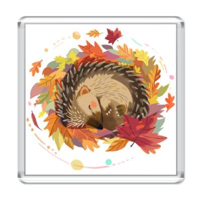 Магнит Осень. Ежик. Осенняя листва