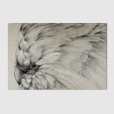 Холст Былый попугай