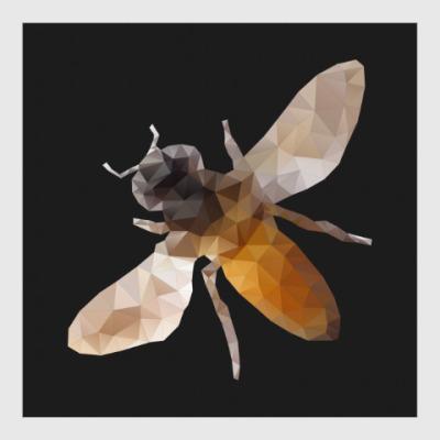 Постер Пчела / Bee