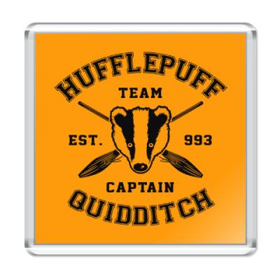 Магнит Hufflepuff Quidditch