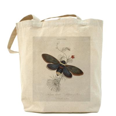 Сумка Cicada indica
