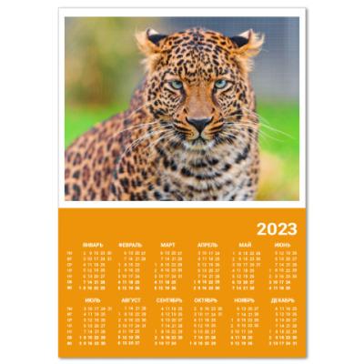 Календарь Взгляд большой кошки