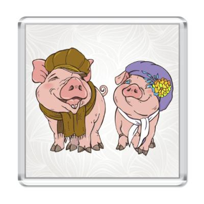 Магнит Год желтой свиньи 2019