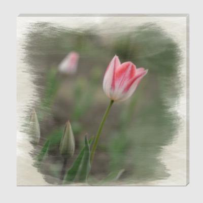 Холст Апрельский тюльпан