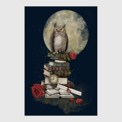 Постер Мудрая сова и книги