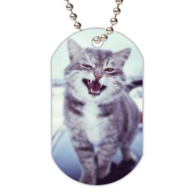 Жетон dog-tag Смазливый кот.