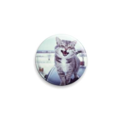 Значок 25мм Смазливый кот.