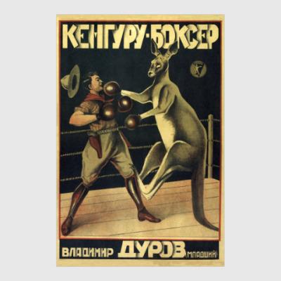 Постер Кенгуру-боксер