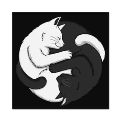 Наклейка (стикер) Черный и белый кот инь-ян