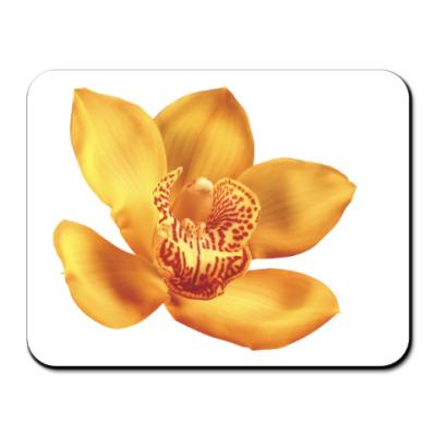 Коврик для мыши Орхидея
