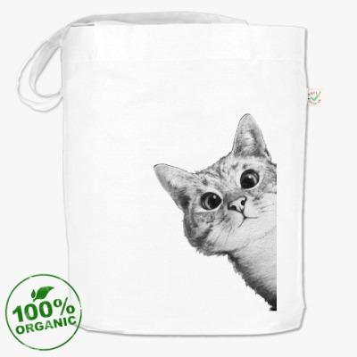 Сумка Любопытный котик