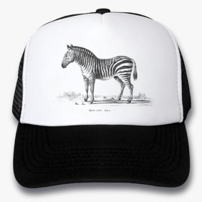 Кепка-тракер Винтажная зебра