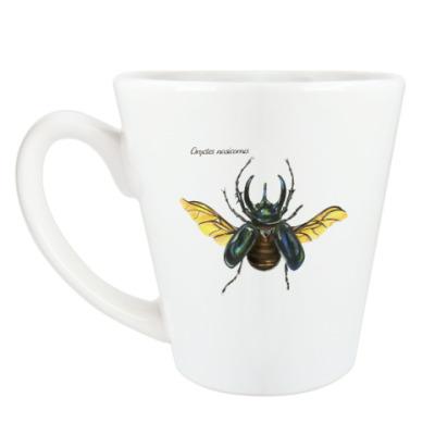 Чашка Латте Oryctes nasicornis