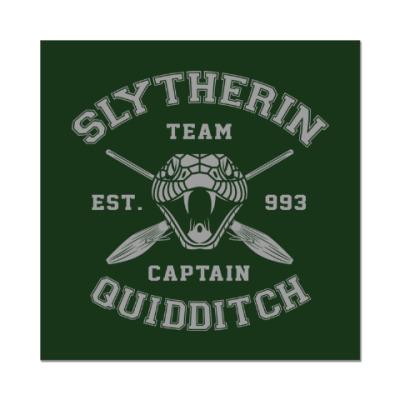 Наклейка (стикер) Slytherin Quidditch Team