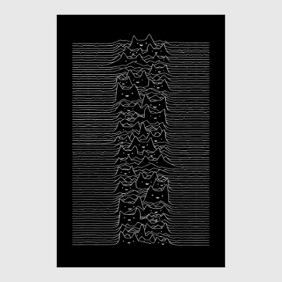 Постер Cat Division Unknown Pleasures