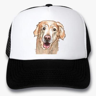 Кепка-тракер Пёс