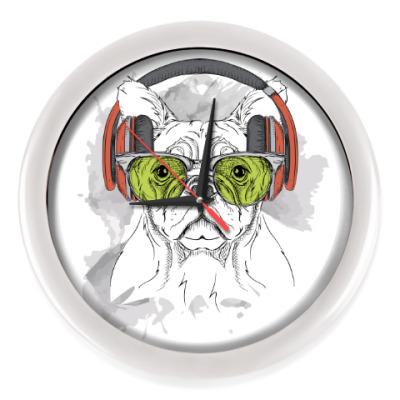 Настенные часы Собака в зеленых очках