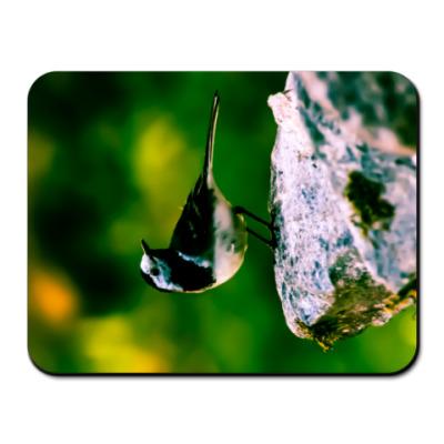 Коврик для мыши Птица на камне v1.1
