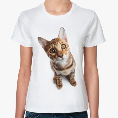 Классическая футболка Котики, котята, кошки