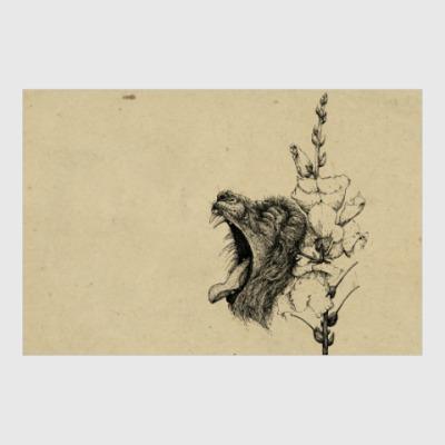 Постер Львиный зев