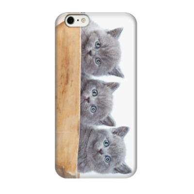 Чехол для iPhone 6/6s Милые котики, коты и котята