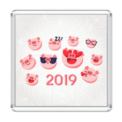 Магнит Год кабана 2019
