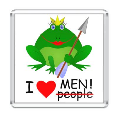 Магнит Царевна-лягушка