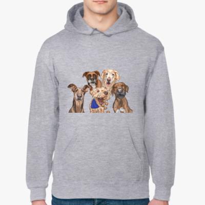 Толстовка худи Собаки