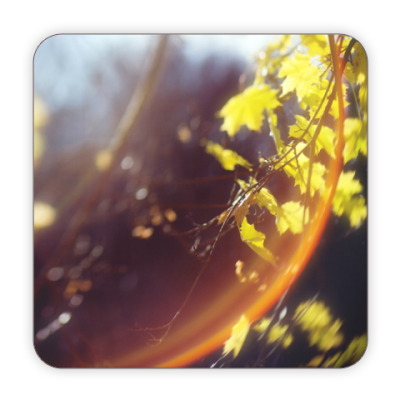 Костер (подставка под кружку) Осеннее солнце