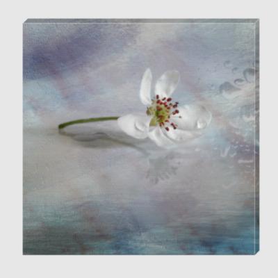 Холст Цветок грушевого дерева