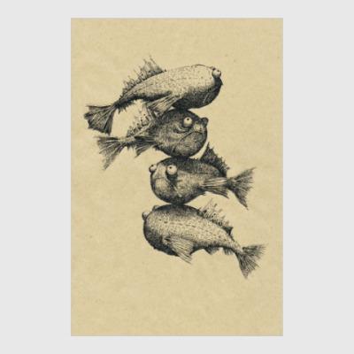 Постер Fishes