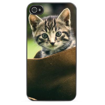 Чехол для iPhone Котенок в башмаке