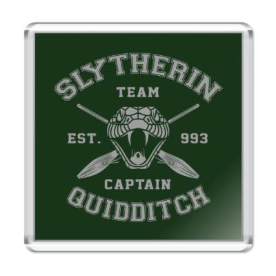 Магнит Slytherin Quidditch Team