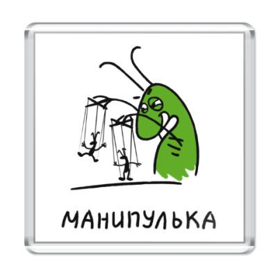 Магнит Манипулька
