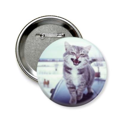 Значок 58мм Смазливый кот.