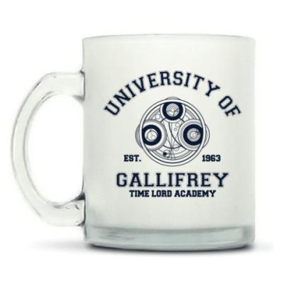 Кружка матовая University of Gallifrey