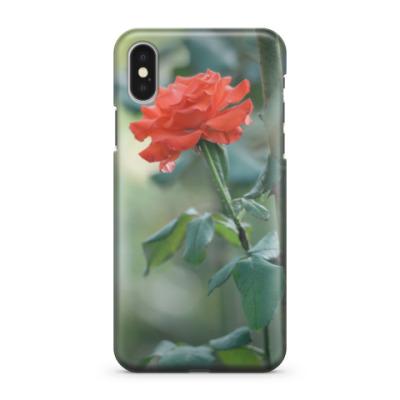 Чехол для iPhone X Сентябрьская роза
