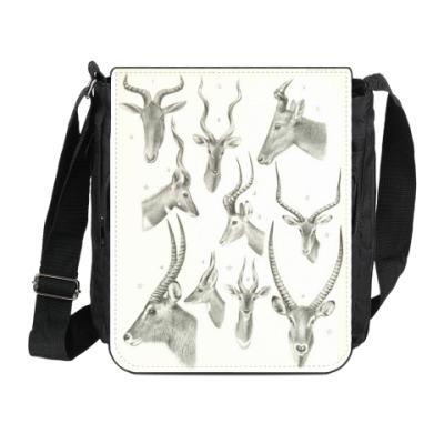 Сумка на плечо (мини-планшет) Антилопы