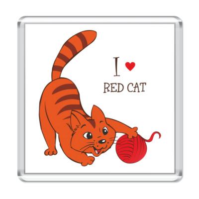 Магнит Я люблю рыжих котов